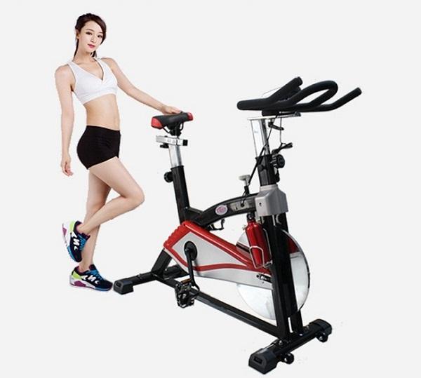 xe đạp tập thể dục giá rẻ chất lượng tại TpHCM
