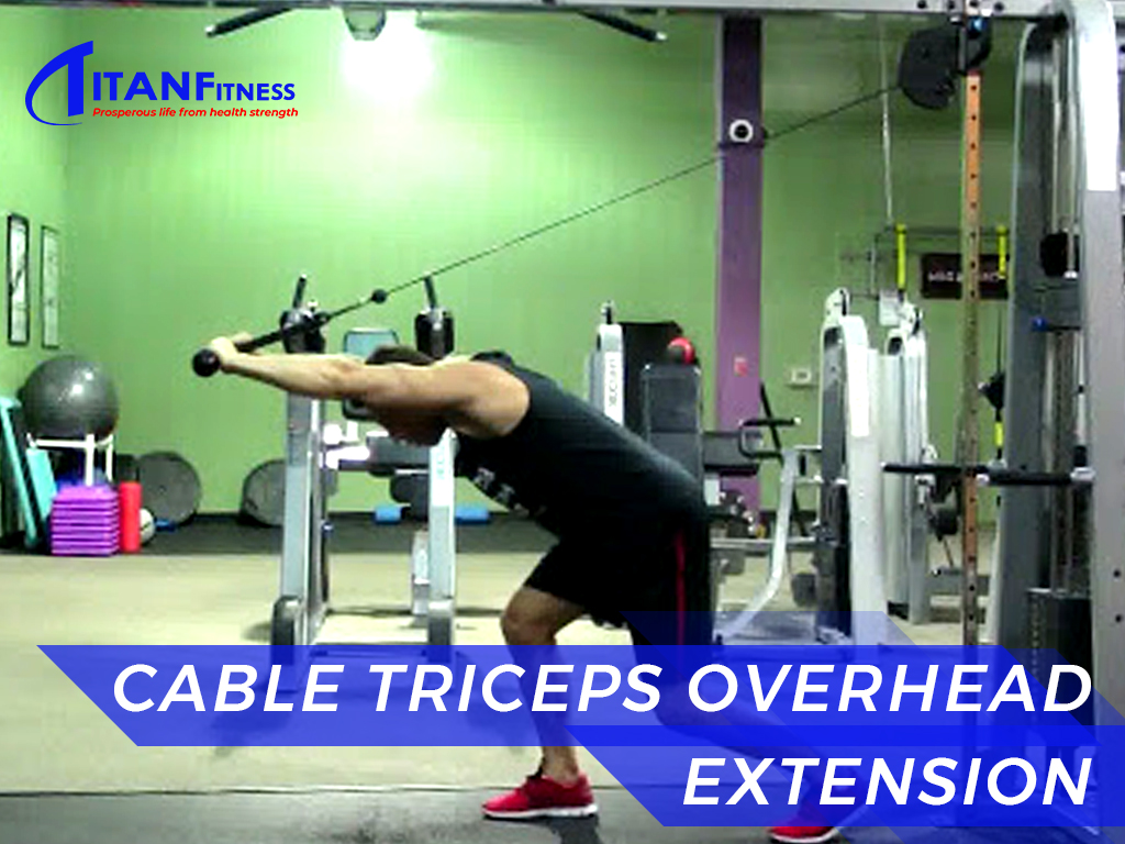 Cable Triceps Overhead Extension